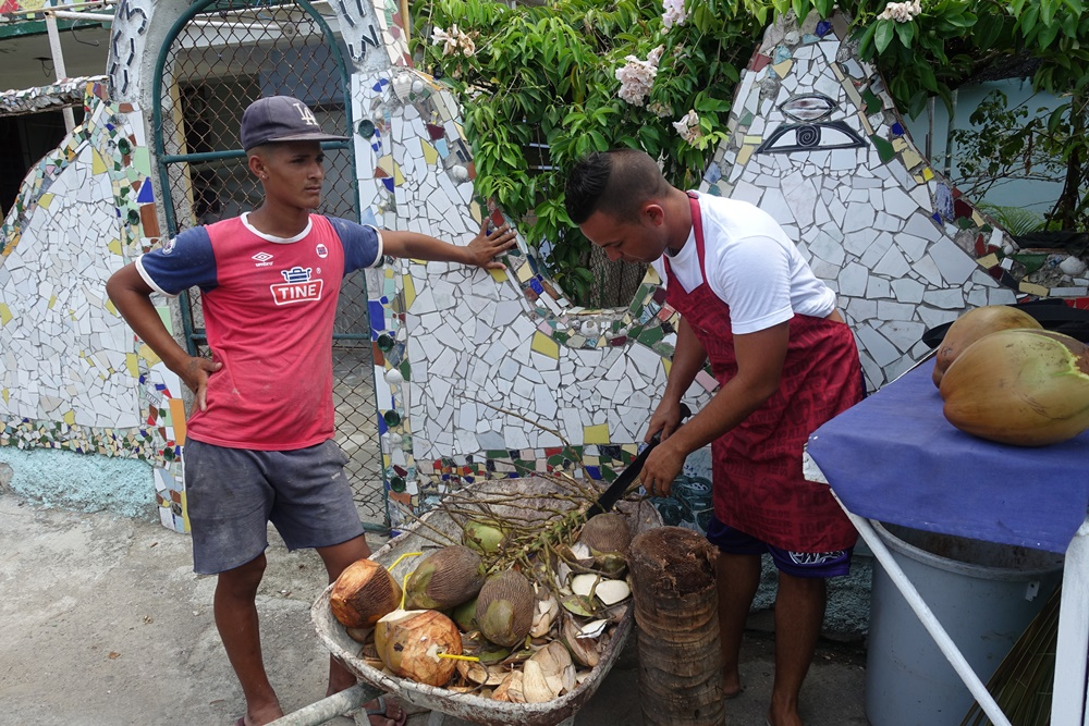 Coconut vendors in Havana.