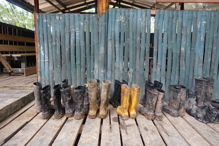 Muddy boots in Borneo, Malaysia by Lori Zaino